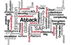 SAP Platform Security