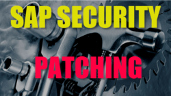 SAP Security patching