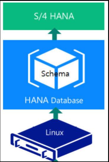 1_SAP system